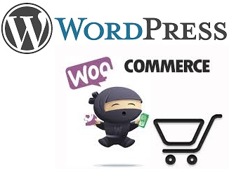 collegare wordpress a easyfatt